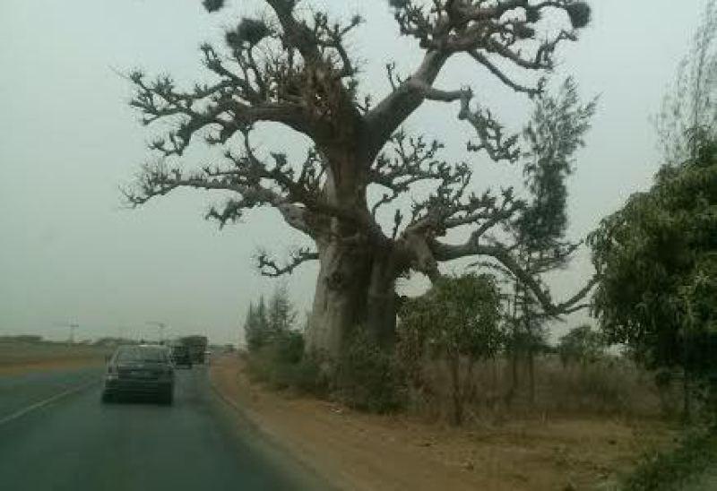 Ruta a Bamako - Mali
